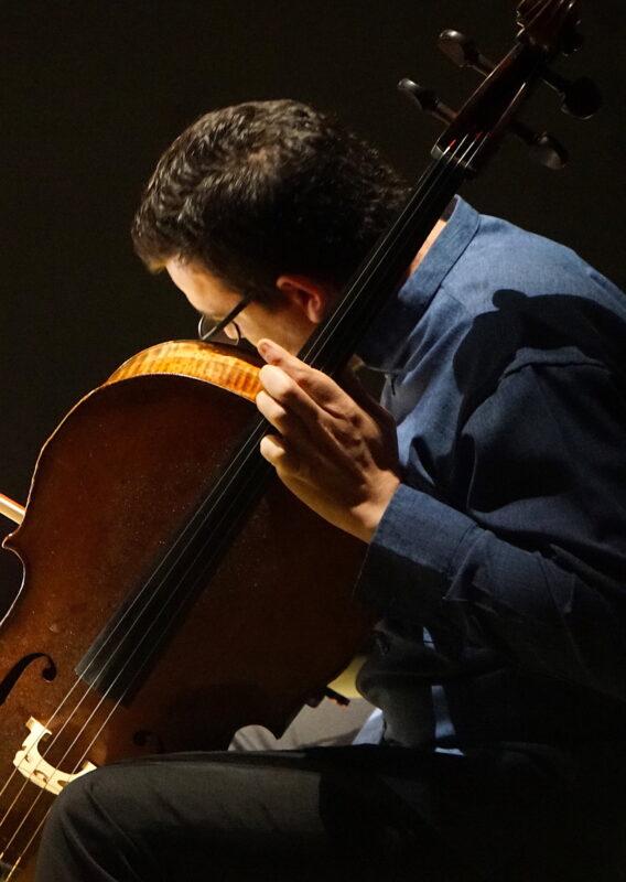 Giacomo Gaudenzi